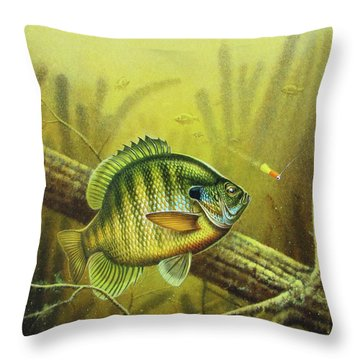 Angling Throw Pillows