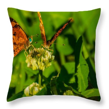Bluehead Butterfly Throw Pillow