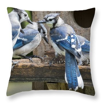 Throw Pillow featuring the photograph Bluejays Party  by Ricky L Jones