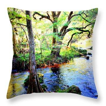 Blues In Florida Swamp Throw Pillow