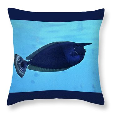 Bluespine Unicorn Fish Throw Pillow