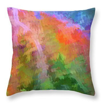 Throw Pillow featuring the photograph Blurry Painting by Wendy McKennon