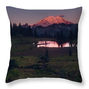 Morning Blush Throw Pillow