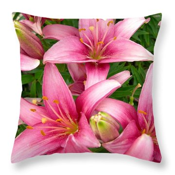 Blush Of The Blossoms Throw Pillow
