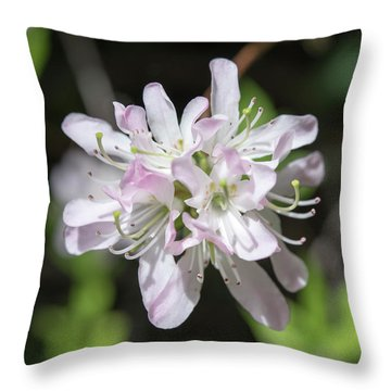 Blushing Azaleas Throw Pillow