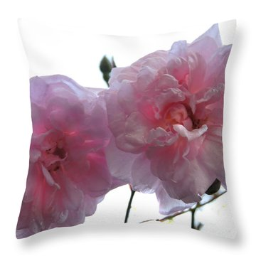 Blushing Beauties Throw Pillow