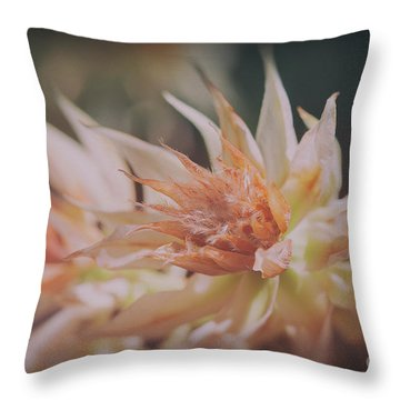 Throw Pillow featuring the photograph Blushing Bride by Linda Lees