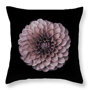 Blushing Dahlia  Throw Pillow
