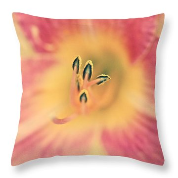 Blushing Lily Throw Pillow by Tim Good