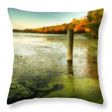 Blydenberg Park In The Fall Throw Pillow