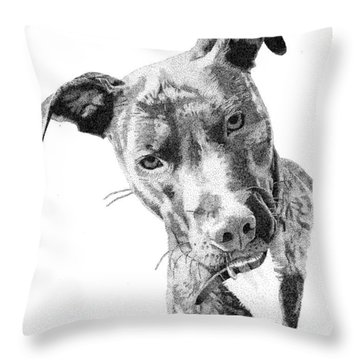 Bo Throw Pillow