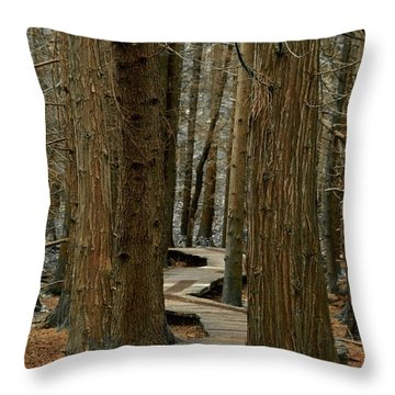 Throw Pillow featuring the photograph Boardwalk Among Trees by Scott Holmes