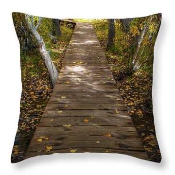 Boardwalk Over Convict Creek Throw Pillow