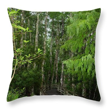 Boardwalk Through The Bald Cypress Strand Throw Pillow by Barbara Bowen
