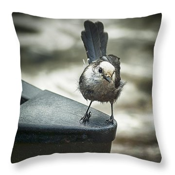 Boat Sparrow Throw Pillow
