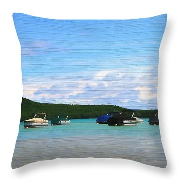 Boats In Sleeping Bear Bay Wood Texture Throw Pillow by Dan Sproul