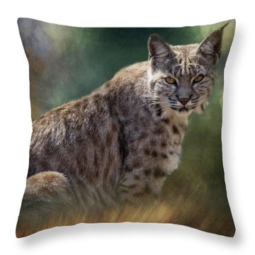Bobcat Gaze Throw Pillow