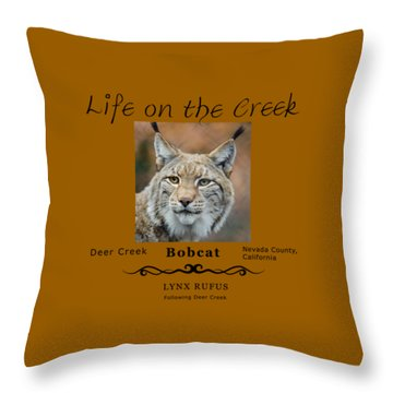 Bobcat - Lynx Rufus Throw Pillow