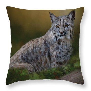 Bobcat On Alert Throw Pillow