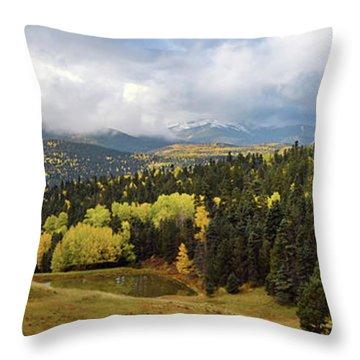 Bobcat Vista Throw Pillow
