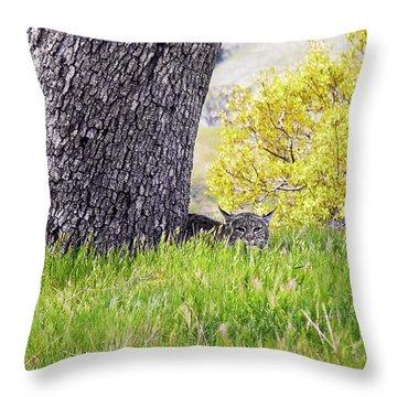 Bobcat Watch Throw Pillow by Karen  W Meyer