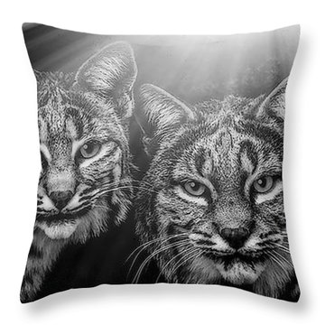 Throw Pillow featuring the mixed media Bobcats by Elaine Malott