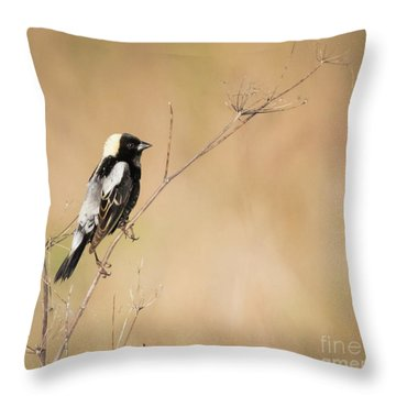 Throw Pillow featuring the photograph Bobolink  by Ricky L Jones