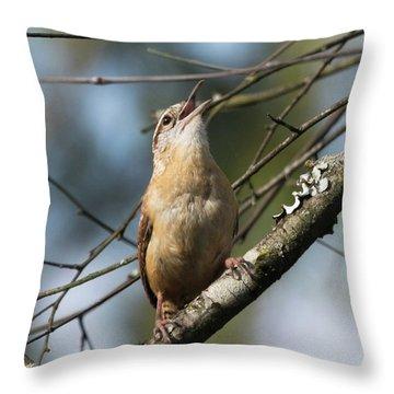 Bobolink Singing Throw Pillow