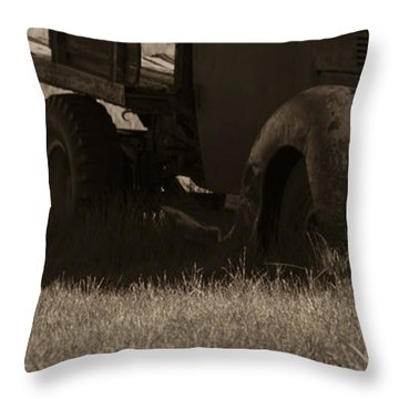 Bodie 11 Throw Pillow