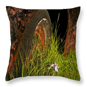 Bodie 13 Throw Pillow