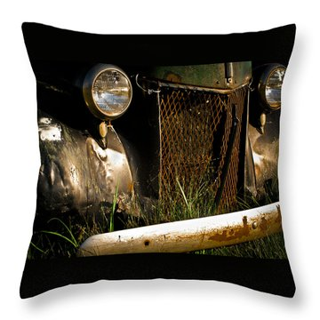 Bodie 14 Throw Pillow