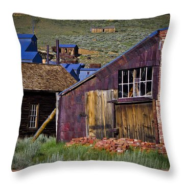 Bodie 18 Throw Pillow