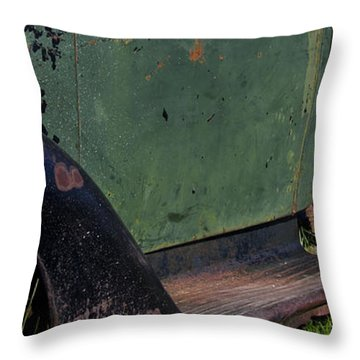 Bodie 3 Throw Pillow