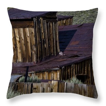 Throw Pillow featuring the photograph Bodie 33 by Catherine Sobredo
