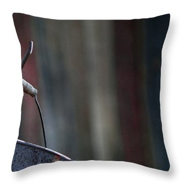 Throw Pillow featuring the photograph Bodie 42 by Catherine Sobredo