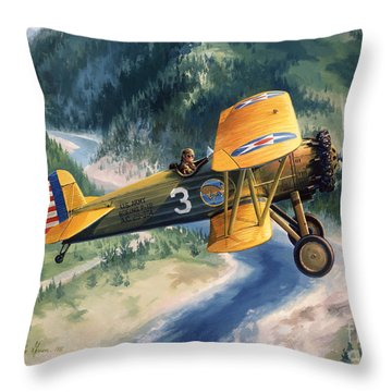 Boeing Country Throw Pillow by Randy Green