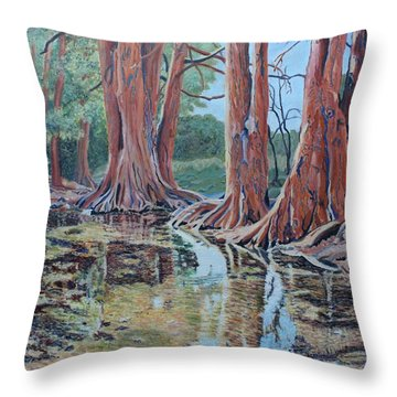 Boerne River Scene Throw Pillow