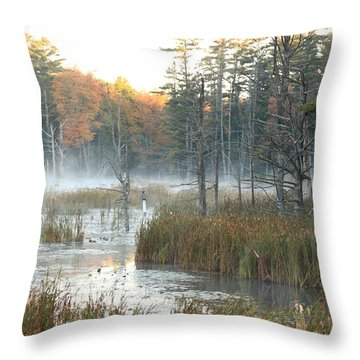Bog Fog Throw Pillow