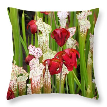 Bog In Bloom Throw Pillow by Katherine White