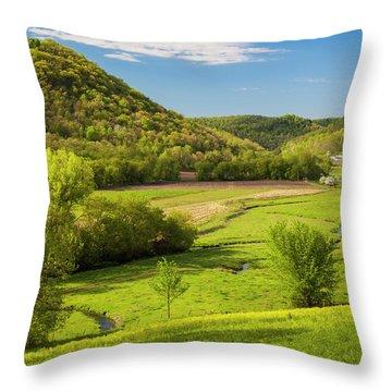 Bohemian Valley Throw Pillow