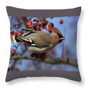 Bohemian Waxwing In Paradise Apple Tree Throw Pillow