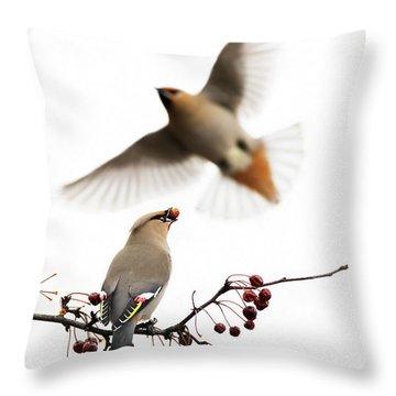 Throw Pillow featuring the photograph Bohemian Waxwings by Mircea Costina Photography