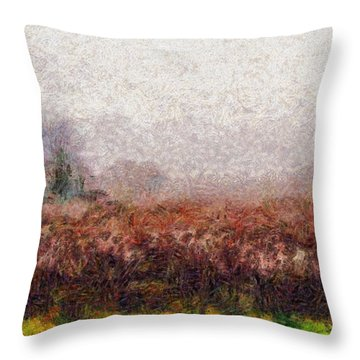 Boiling Field Throw Pillow