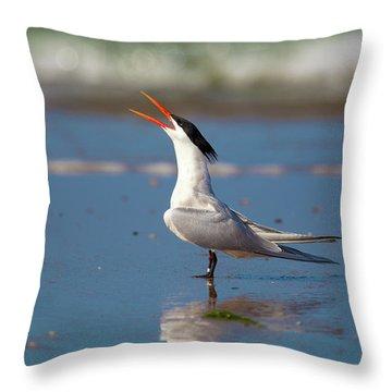 Elegant Tern Throw Pillows