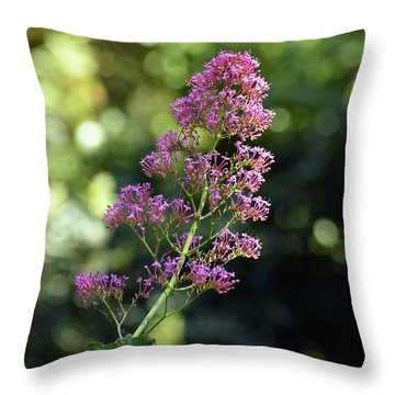 Bokeh Of Anacapri Flower Throw Pillow