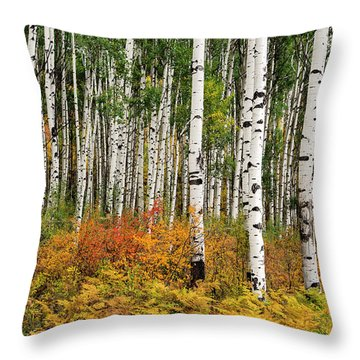 Throw Pillow featuring the photograph Bold And Magnificent Autumn by Tim Reaves