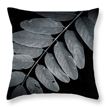Bold Branch Throw Pillow