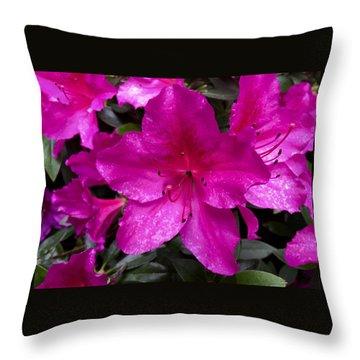 Bold Pink Flower Throw Pillow