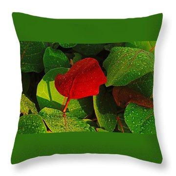 Bold Red Sea Grape Leaf Throw Pillow