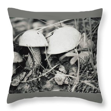 Throw Pillow featuring the photograph Boletus Mushrooms by Juls Adams